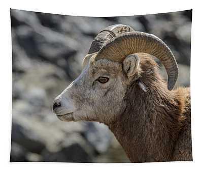 Close Big Horn Sheep  Tapestry