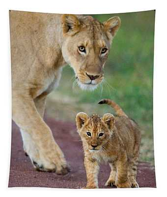 Close-up Of A Lioness And Her Cub Tapestry