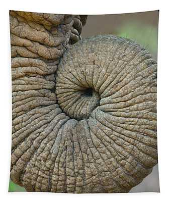 Close-up Of An African Elephants Trunk Tapestry