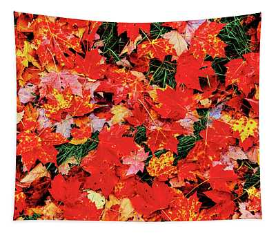 Close-up Of Maple Leaves On Grass Tapestry