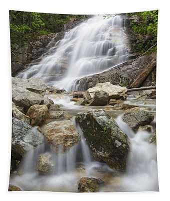 Cloudland Falls - Franconia Notch State Park New Hampshire Usa Tapestry