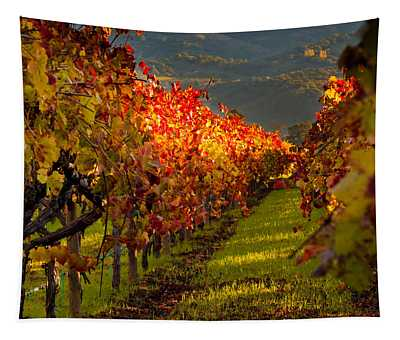 Color On The Vine Tapestry