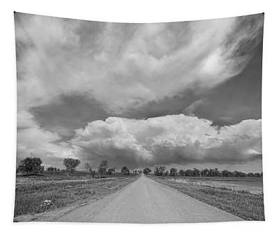 Colorado Country Road Stormin Skies Bw Tapestry