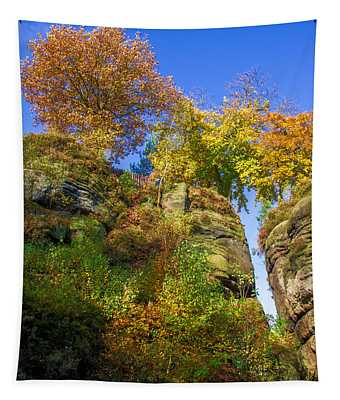 Colorful Trees In The Elbe Sandstone Mountains Tapestry