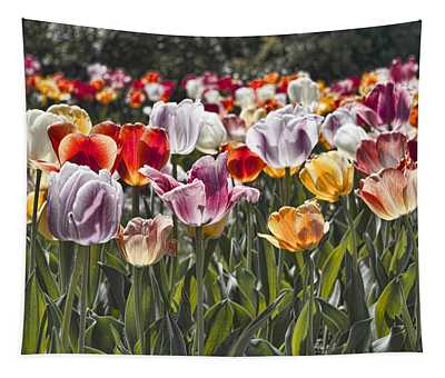 Colorful Tulips In The Sun Tapestry