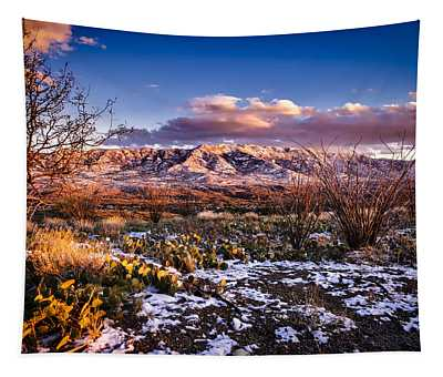 Colors Of Winter Tapestry