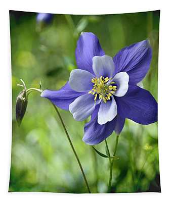 Columbine Card  Tapestry