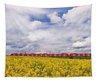 Commuter Train Passing Through Oilseed Tapestry