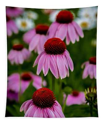 Coneflowers In Front Of Daisies Tapestry