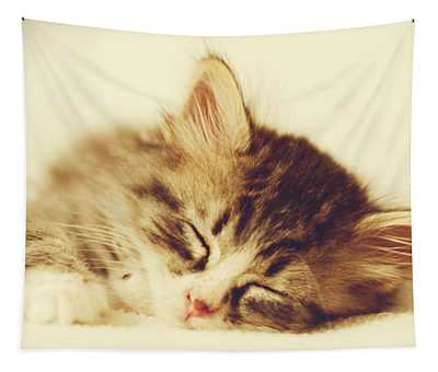 Content Kitty Tapestry