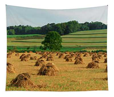 Corn Shocks, Amish Country, Ohio, Usa Tapestry