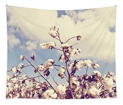 Cotton In The Sky With Filter Tapestry