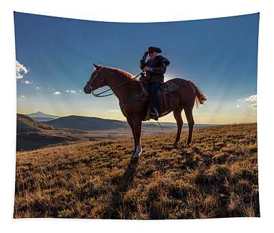 Cowboy Looks Out Over Historic Last Tapestry