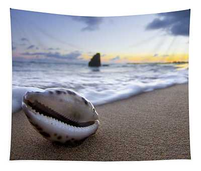 Cowrie Sunrise Tapestry