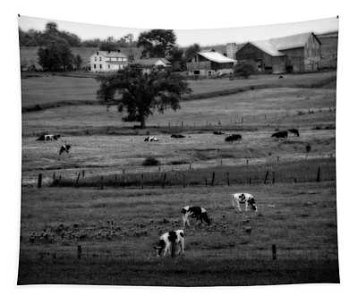 Cows On The Amish Farm Tapestry