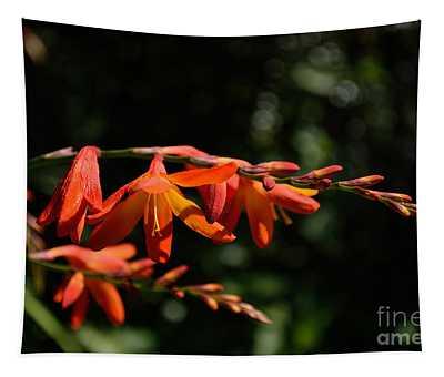 Crocosmia 'dusky Maiden' Flowers Tapestry