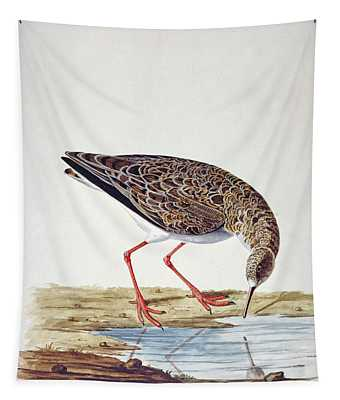 Curlew Sandpiper Tapestry
