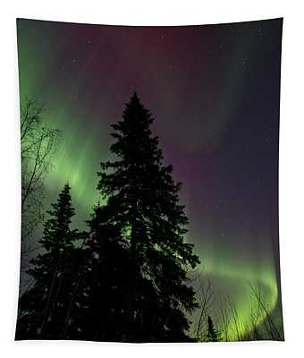 Curtain Of Colours Tapestry