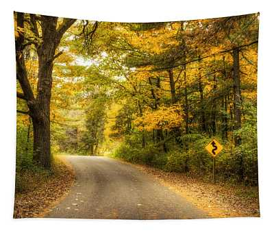 Curves Ahead Tapestry
