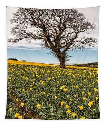 Daffodil Valley Tapestry