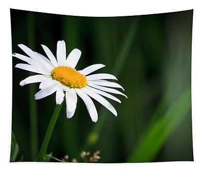 Daisy - Bellis Perennis Tapestry