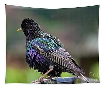 Darling Starling Tapestry