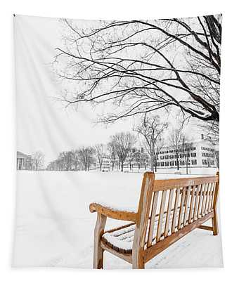 Dartmouth Winter Wonderland Tapestry