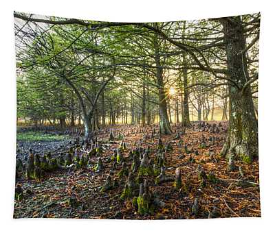 Dawn At Grassy Waters Tapestry