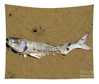 Decomposing Dead Fish Carcass Washed Ashore Tapestry