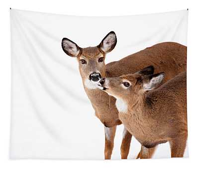 Deer Kisses Tapestry