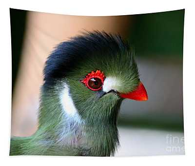 Delicate Green Turaco Bird With Red Beak White Patches And Black Crown Tapestry