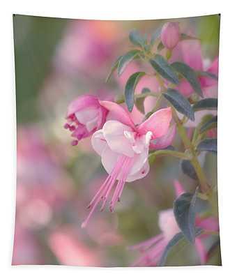 Delicate Tapestry