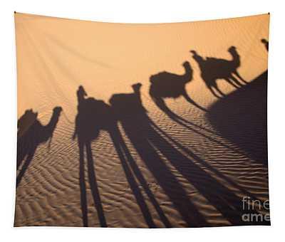 Desert Shadows Tapestry