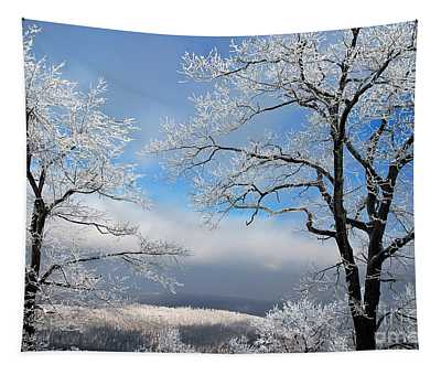 Distant Storms Tapestry
