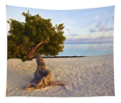 Divi Divi Tree Of Aruba Tapestry