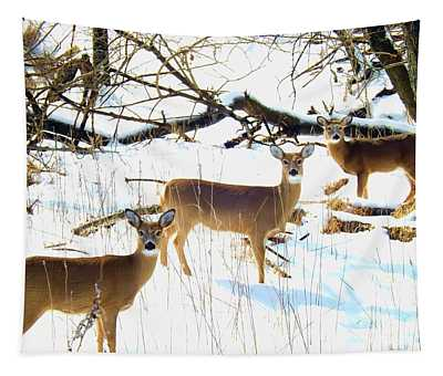 Does In The Snow Tapestry