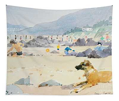 Dog On The Beach Woolacombe Tapestry