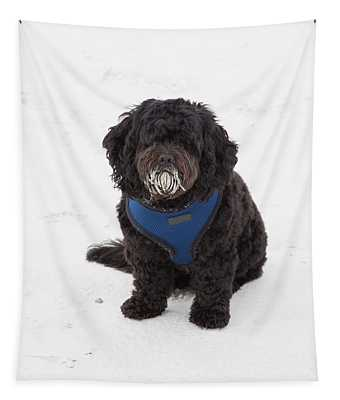 Doggone Good Beach Fun Tapestry