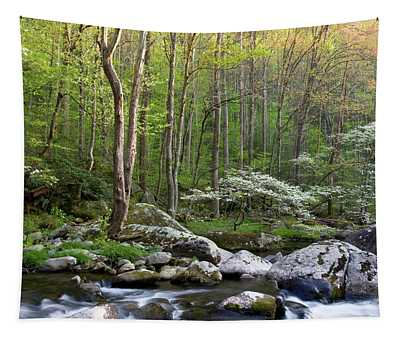 Dogwood Trees In Spring Along Middle Tapestry