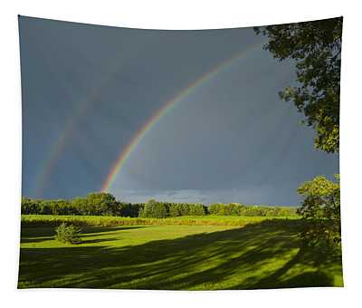 Double Rainbow Over Fields Tapestry