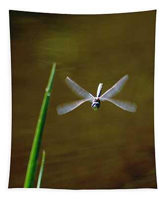 Dragonflight Tapestry