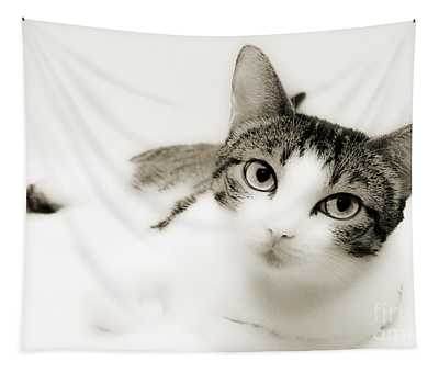 Dreamy Cat 2 Tapestry