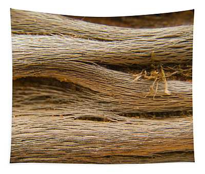 Driftwood 1 Tapestry