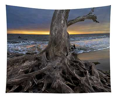 Driftwood On Jekyll Island Tapestry