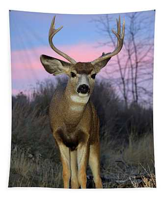 Early Morning Buck Tapestry