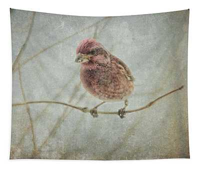 Early Spring Visitor Tapestry