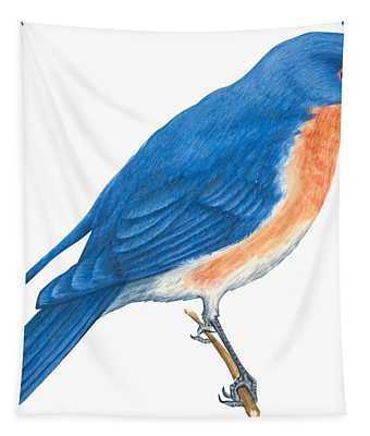 Eastern Bluebird Tapestry