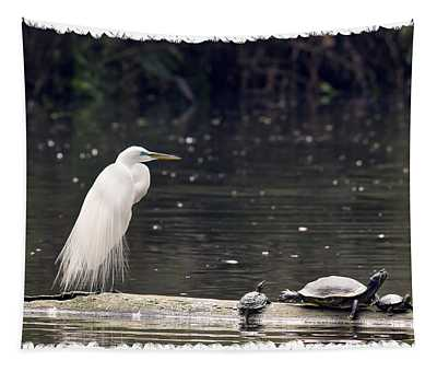 Egret And Turtles Tapestry