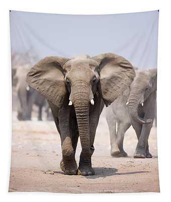 Elephant Bathing Tapestry