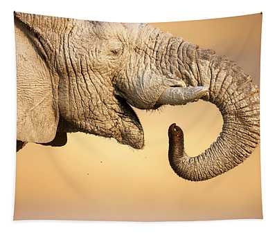 Elephant Drinking Tapestry